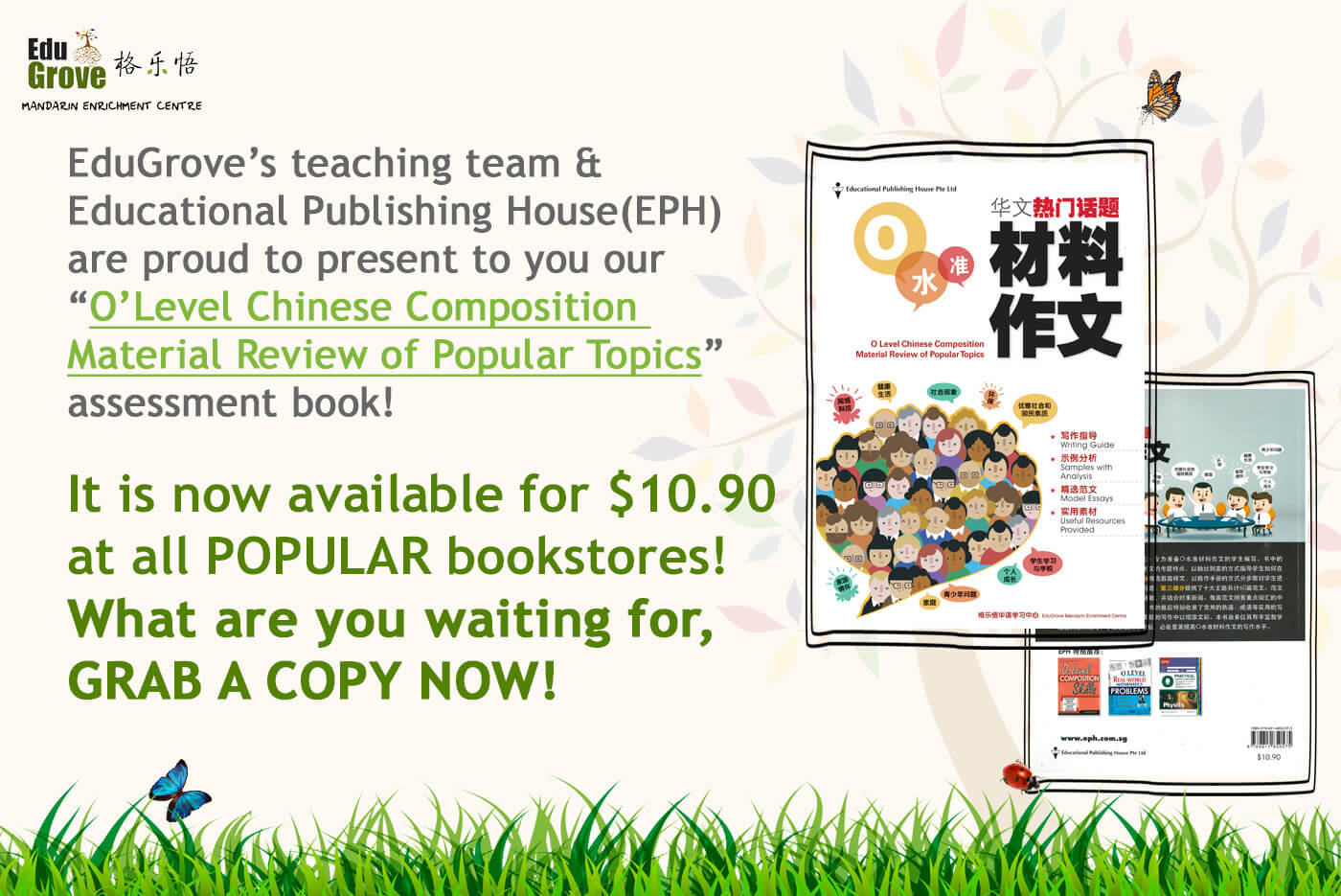 o level chinese composition assessment book